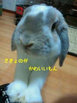 image0004.jpg